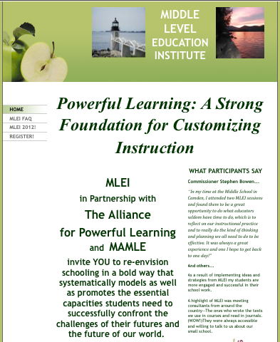 picture of MLEI website